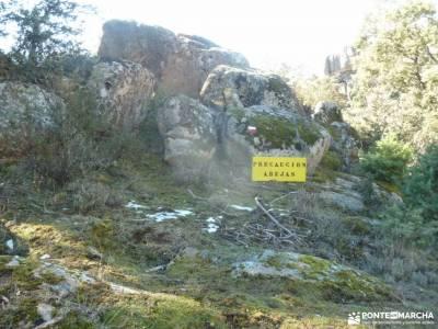 Gran Cañada-Cordel la Pedriza; montaña cerca de madrid primer parque nacional de españa caminito